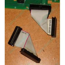 6017B0045701 Шлейф 24 pin для Intel C74974-401 T0043401-B01 корпуса SR2400 (Истра)